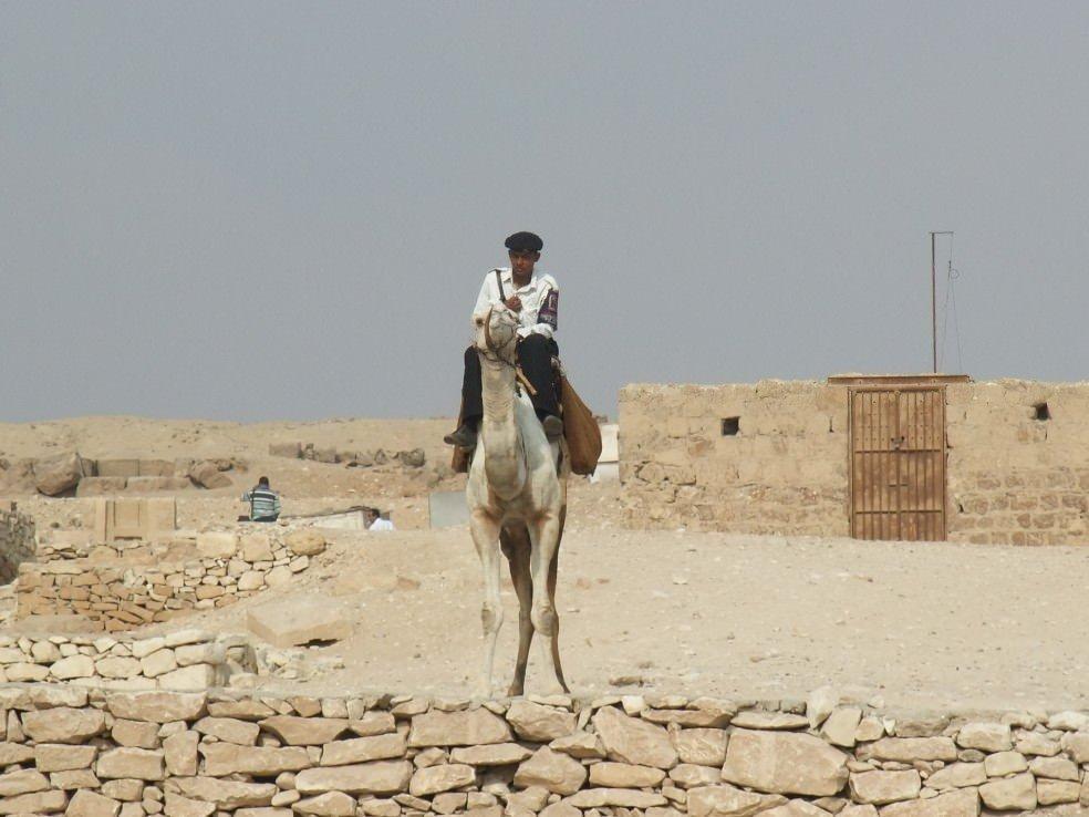 Egypt 2010 247