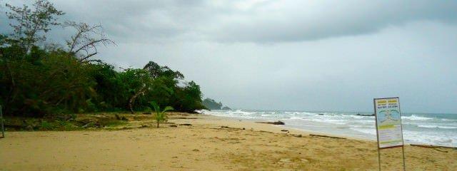 Bocas Del Toro. Red Frog Beach.