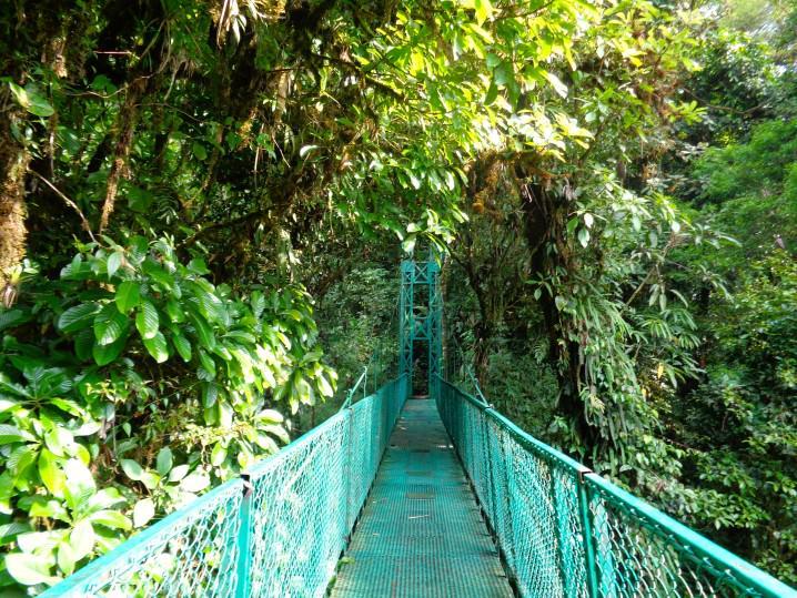 Canopy bridges, Monte Verde, Costa Rica