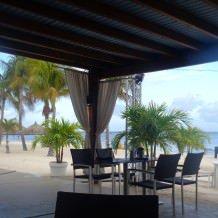 Divi Aruba Phoenix Beach Resort - Aruba