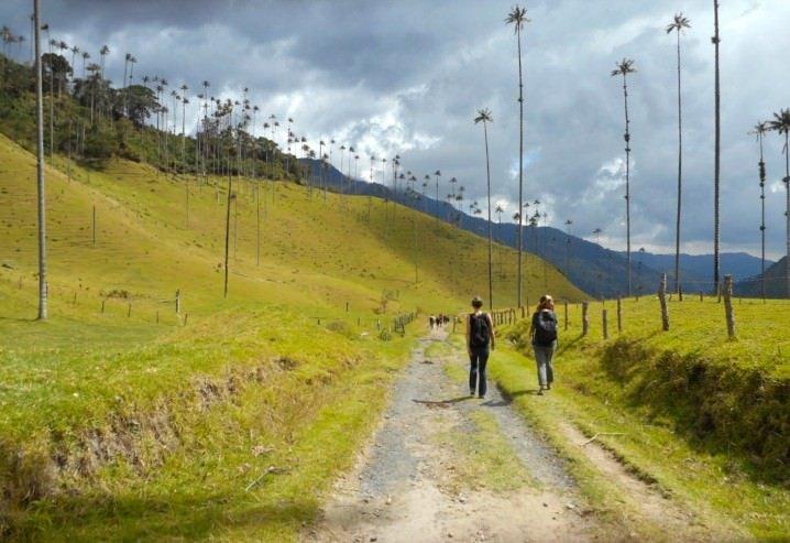 Palma de Cera - Women traveling solo in Colombia