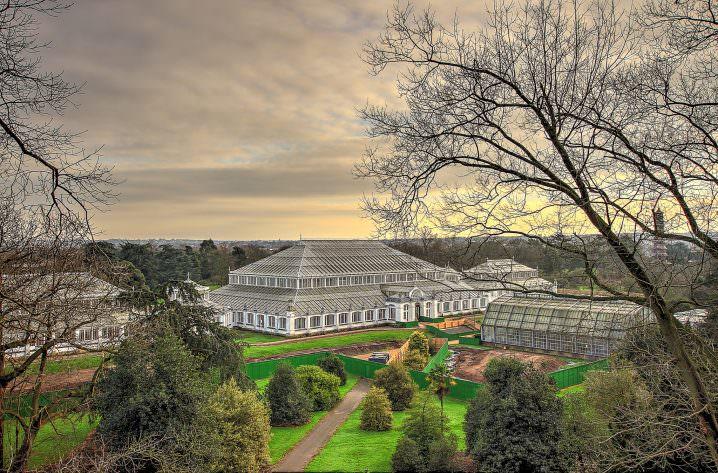 Kew Garden, London