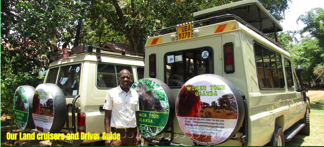 Women Tour Uganda: Gorilla Trekking in Uganda