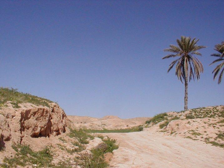 Solo travel in Tunisia
