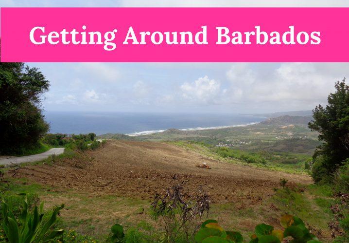 getting around Barbados